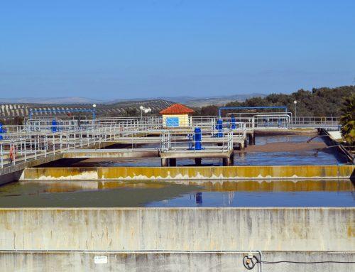 REUTIVAR acredita la viabilidad y el potencial de la aplicación de aguas regeneradas al cultivo del olivar